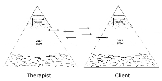 Therapist and client Focusing diagram