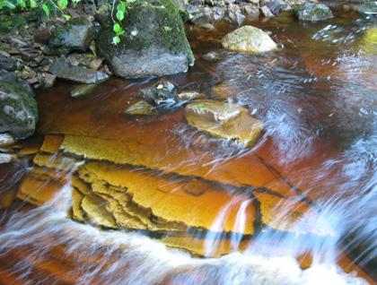 a peaty stream running over flat rocks
